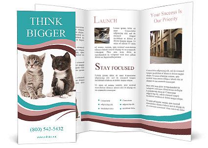 0000076205 Brochure Template