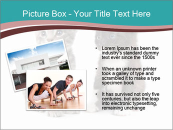 0000076205 PowerPoint Templates - Slide 20