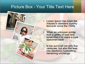 0000076208 PowerPoint Template - Slide 17