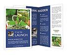 0000076209 Brochure Templates