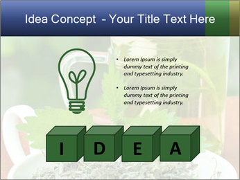 0000076209 PowerPoint Template - Slide 80