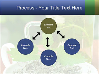 0000076209 PowerPoint Template - Slide 91