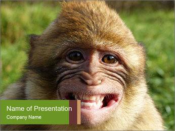0000076211 PowerPoint Template - Slide 1