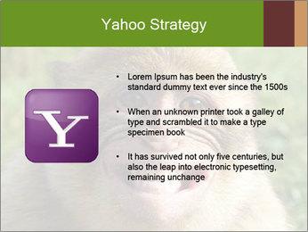 0000076211 PowerPoint Template - Slide 11