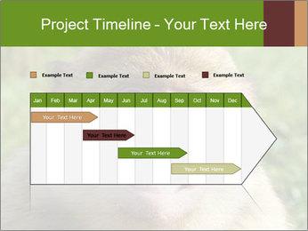 0000076211 PowerPoint Template - Slide 25
