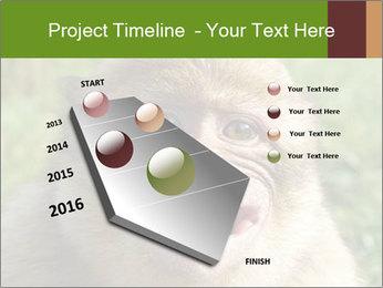 0000076211 PowerPoint Template - Slide 26