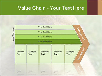 0000076211 PowerPoint Template - Slide 27