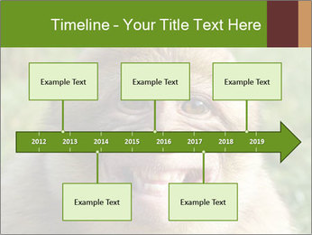 0000076211 PowerPoint Template - Slide 28
