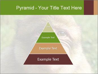 0000076211 PowerPoint Template - Slide 30
