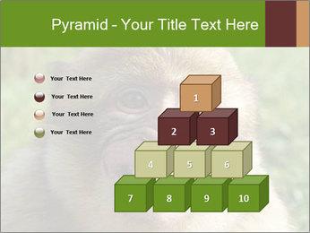 0000076211 PowerPoint Template - Slide 31