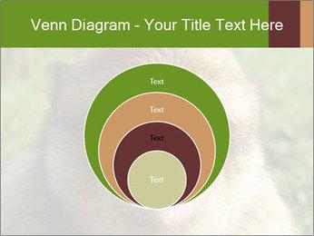 0000076211 PowerPoint Template - Slide 34