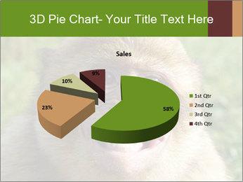 0000076211 PowerPoint Template - Slide 35