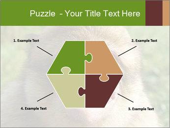 0000076211 PowerPoint Template - Slide 40