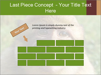 0000076211 PowerPoint Template - Slide 46