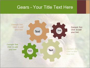 0000076211 PowerPoint Template - Slide 47