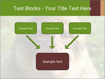 0000076211 PowerPoint Template - Slide 70