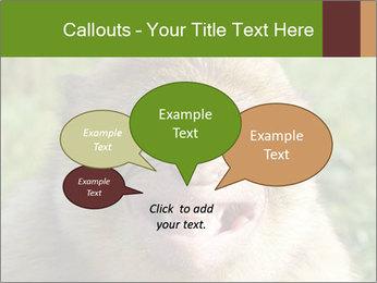 0000076211 PowerPoint Template - Slide 73