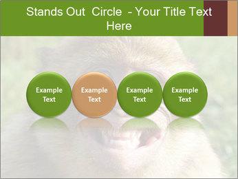 0000076211 PowerPoint Template - Slide 76