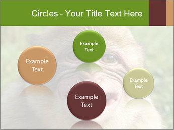 0000076211 PowerPoint Template - Slide 77