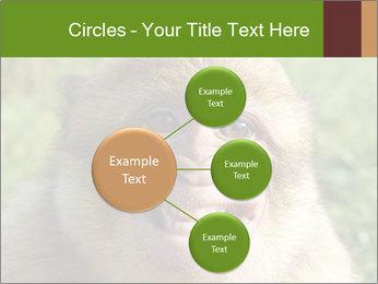 0000076211 PowerPoint Template - Slide 79