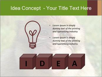 0000076211 PowerPoint Template - Slide 80