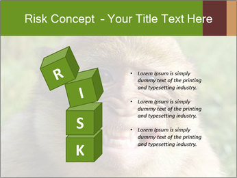 0000076211 PowerPoint Template - Slide 81