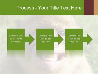 0000076211 PowerPoint Template - Slide 88