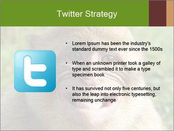 0000076211 PowerPoint Template - Slide 9