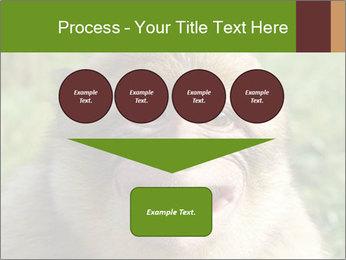 0000076211 PowerPoint Template - Slide 93