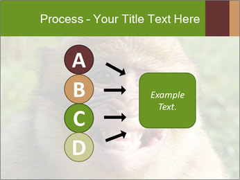 0000076211 PowerPoint Template - Slide 94