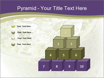 0000076220 PowerPoint Template - Slide 31