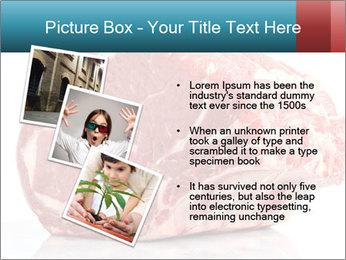 0000076226 PowerPoint Template - Slide 17