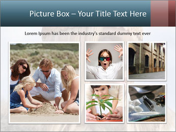 0000076229 PowerPoint Templates - Slide 19