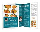 0000076237 Brochure Template