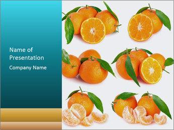 0000076237 PowerPoint Template - Slide 1