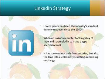 0000076237 PowerPoint Template - Slide 12