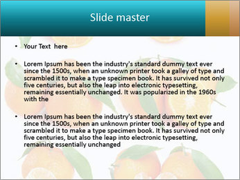 0000076237 PowerPoint Template - Slide 2