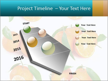 0000076237 PowerPoint Template - Slide 26