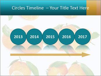 0000076237 PowerPoint Template - Slide 29
