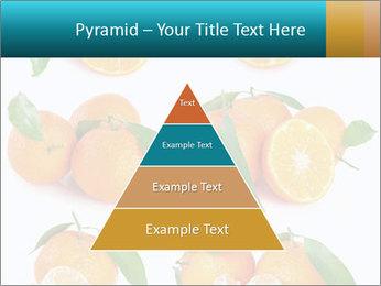 0000076237 PowerPoint Template - Slide 30