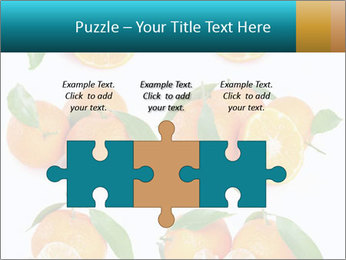 0000076237 PowerPoint Template - Slide 42