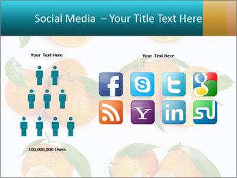 0000076237 PowerPoint Template - Slide 5