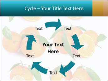 0000076237 PowerPoint Templates - Slide 62