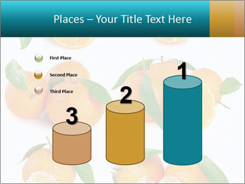 0000076237 PowerPoint Templates - Slide 65