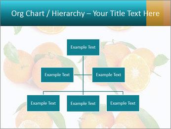 0000076237 PowerPoint Template - Slide 66