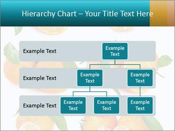 0000076237 PowerPoint Template - Slide 67