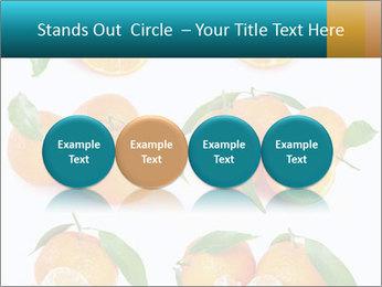 0000076237 PowerPoint Templates - Slide 76