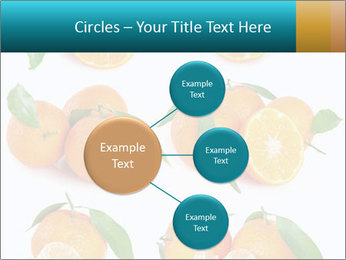 0000076237 PowerPoint Template - Slide 79