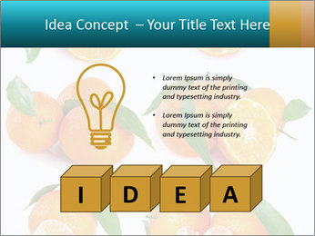 0000076237 PowerPoint Templates - Slide 80