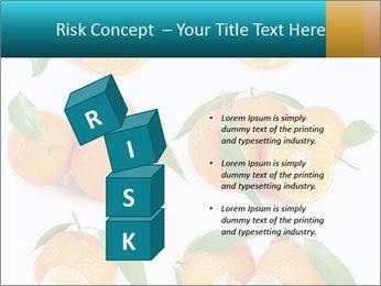 0000076237 PowerPoint Template - Slide 81